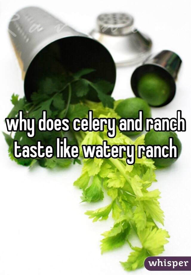 why does celery and ranch taste like watery ranch