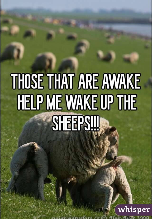 THOSE THAT ARE AWAKE HELP ME WAKE UP THE SHEEPS!!!