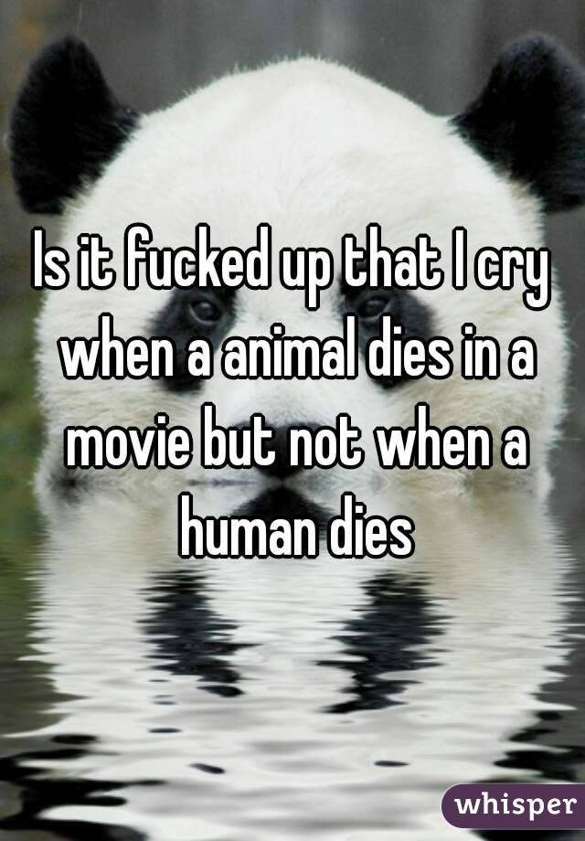 Is it fucked up that I cry when a animal dies in a movie but not when a human dies