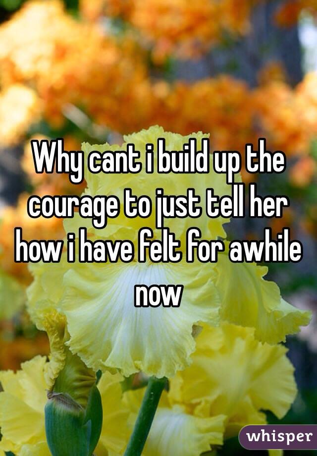 Why cant i build up the courage to just tell her how i have felt for awhile now