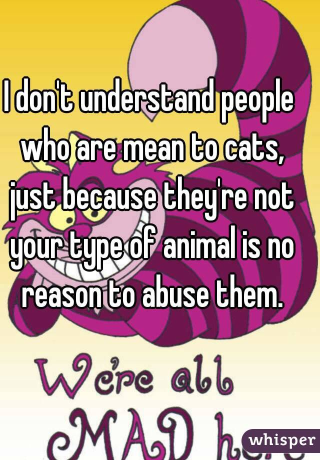 I don't understand people who are mean to cats, just because they're not your type of animal is no reason to abuse them.