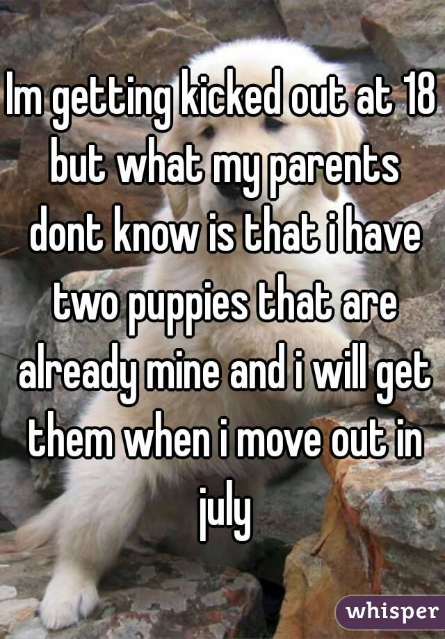 Im getting kicked out at 18 but what my parents dont know is that i have two puppies that are already mine and i will get them when i move out in july