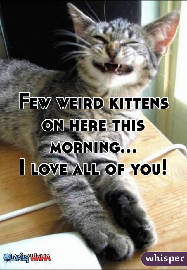 Few weird kittens on here this morning...  I love all of you!