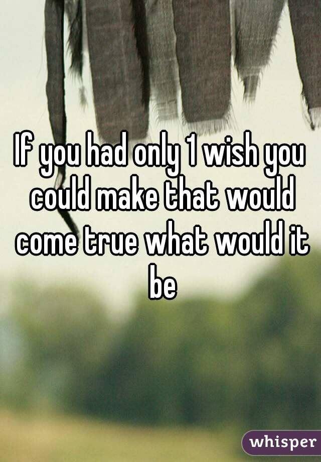 If you had only 1 wish you could make that would come true what would it be