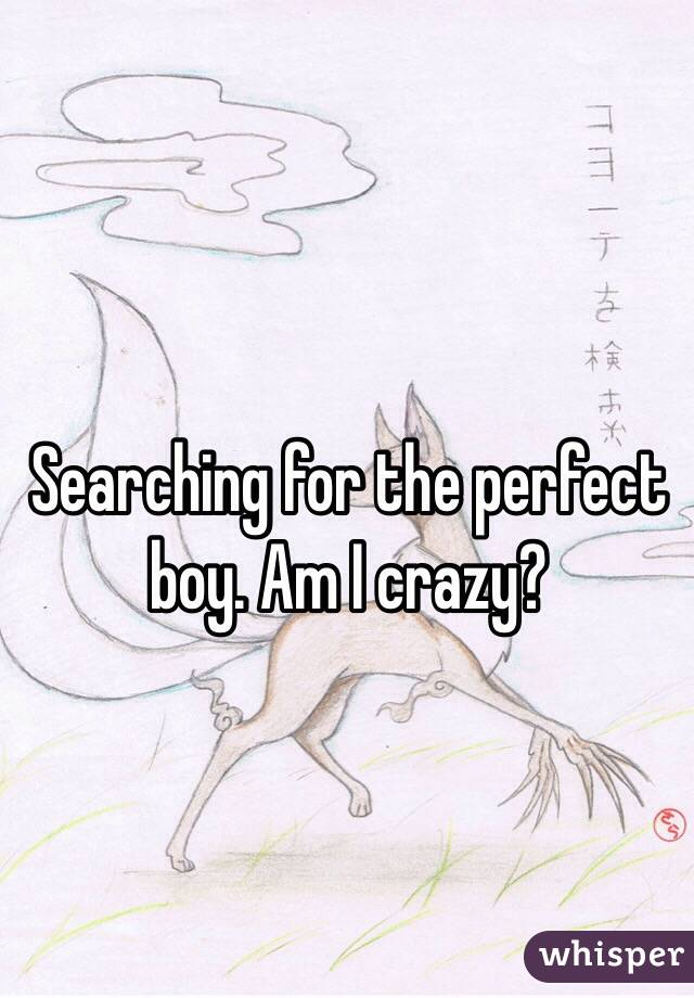Searching for the perfect boy. Am I crazy?