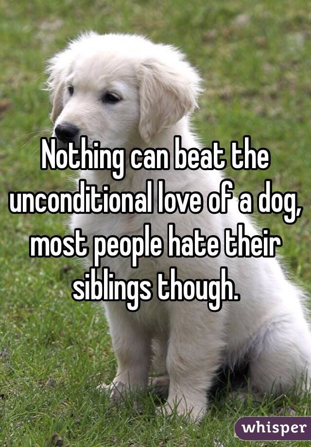 Nothing can beat the unconditional love of a dog, most people hate their siblings though.