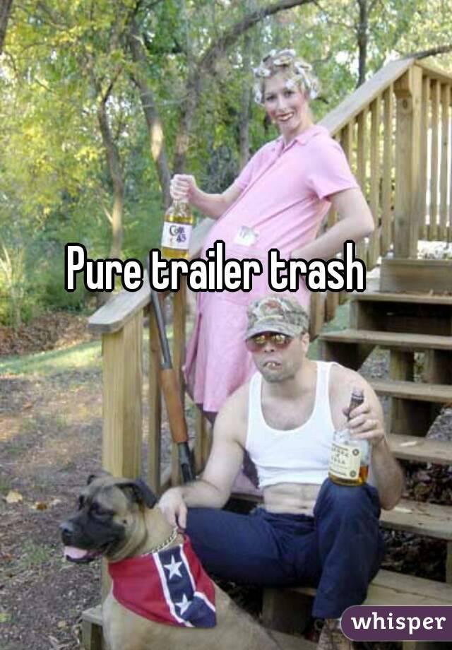 News Trailer Trash Tammy