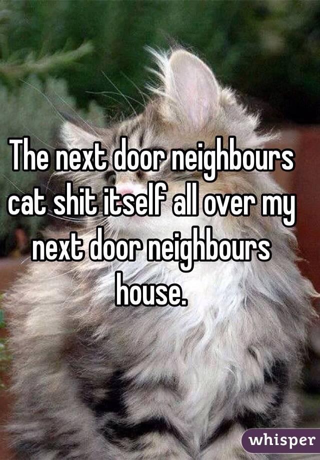 The next door neighbours cat shit itself all over my next door neighbours house.