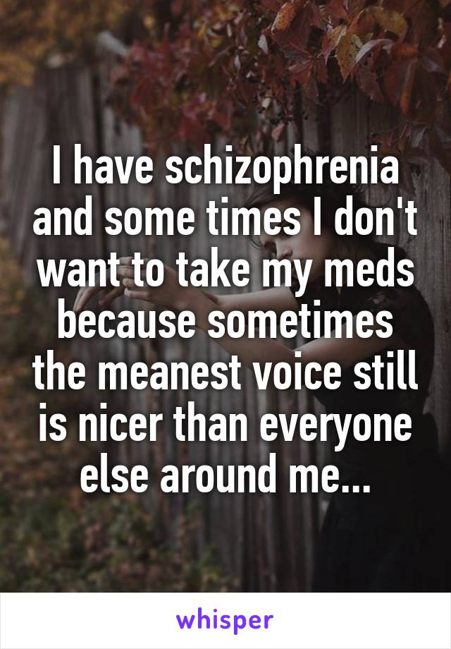 I have schizophrenia and some times I don't want to take my meds because sometimes the meanest voice still is nicer than everyone else around me...