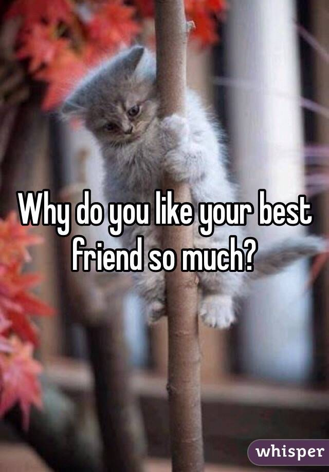 Why do you like your best friend so much?