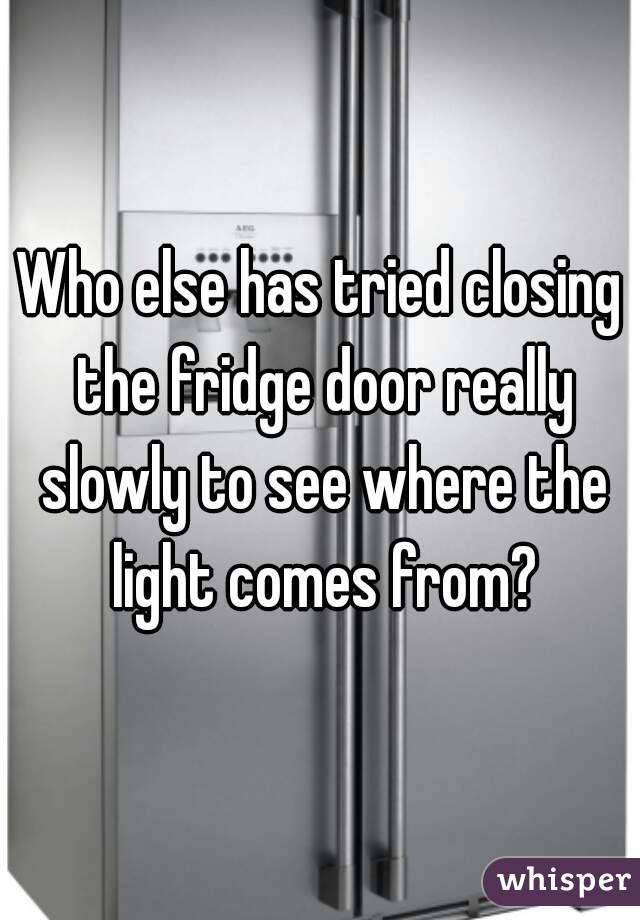 Who else has tried closing the fridge door really slowly to see where the light comes from?