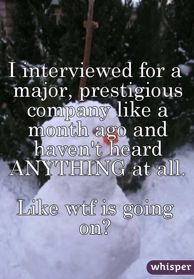 I interviewed for a major, prestigious company like a month ago and haven't heard ANYTHING at all.  Like wtf is going on?