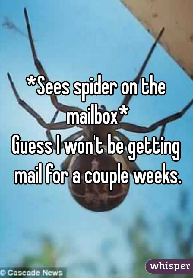 *Sees spider on the mailbox* Guess I won't be getting mail for a couple weeks.