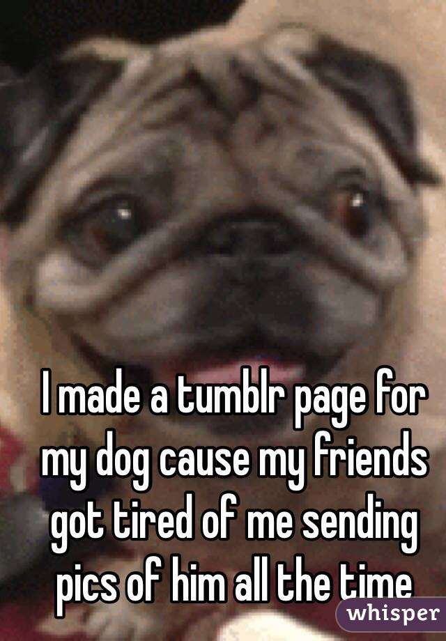 I made a tumblr page for my dog cause my friends got tired of me sending pics of him all the time