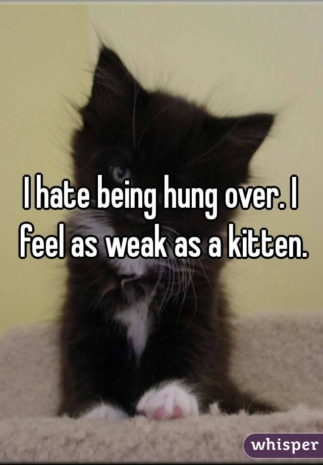 I hate being hung over. I feel as weak as a kitten.