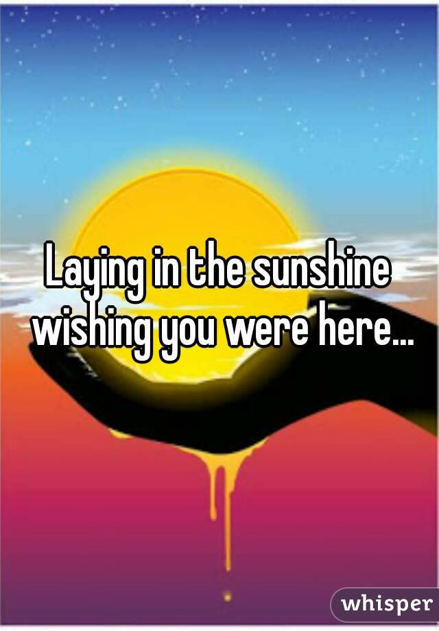 Laying in the sunshine wishing you were here...