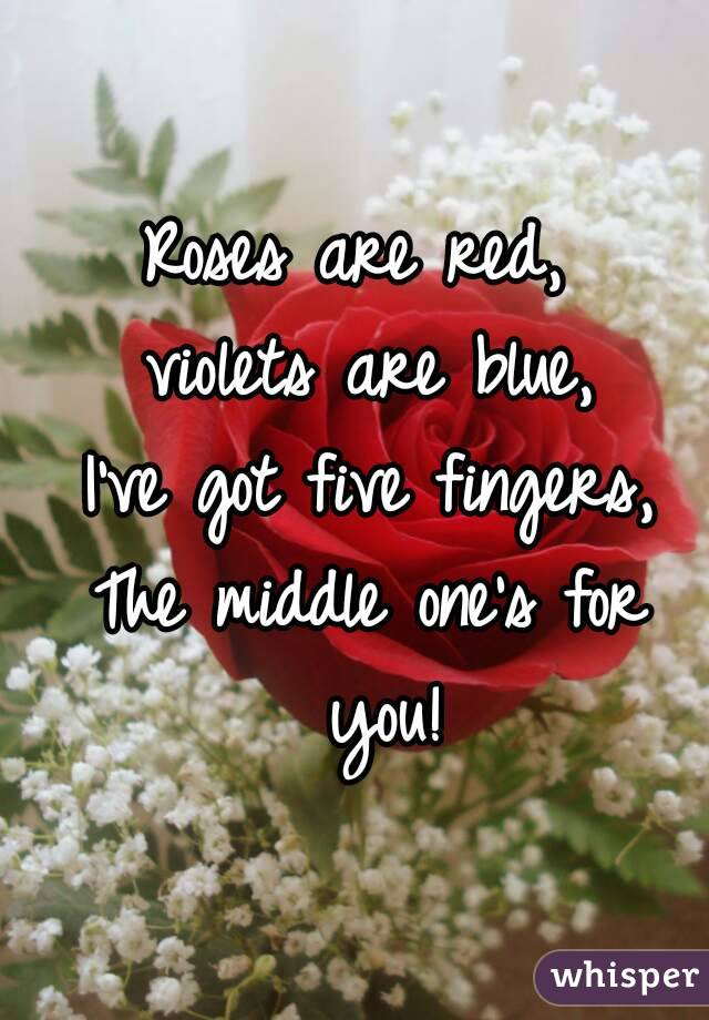 Roses are red,  violets are blue, I've got five fingers, The middle one's for you!