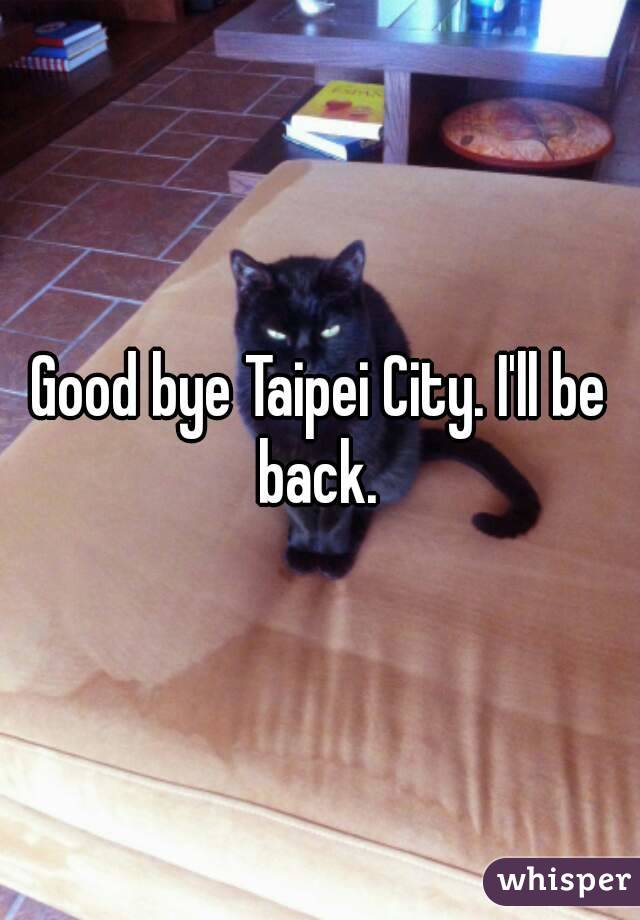 Good bye Taipei City. I'll be back.