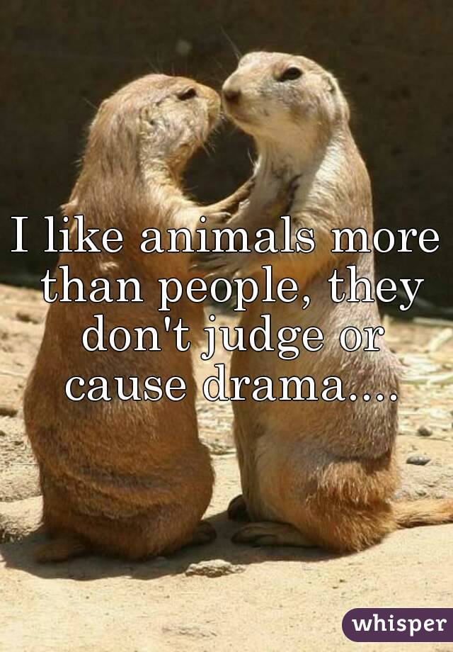 I like animals more than people, they don't judge or cause drama....