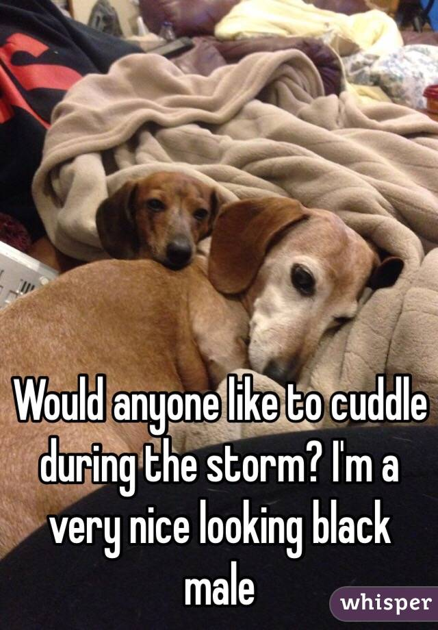 Would anyone like to cuddle during the storm? I'm a very nice looking black male