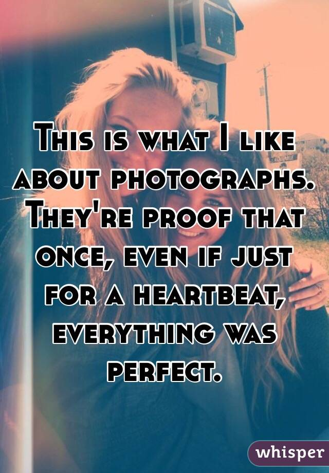 This is what I like about photographs. They're proof that once, even if just for a heartbeat, everything was perfect.