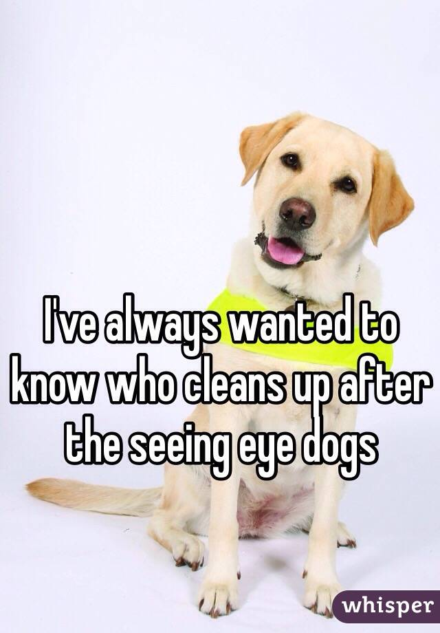 I've always wanted to know who cleans up after the seeing eye dogs