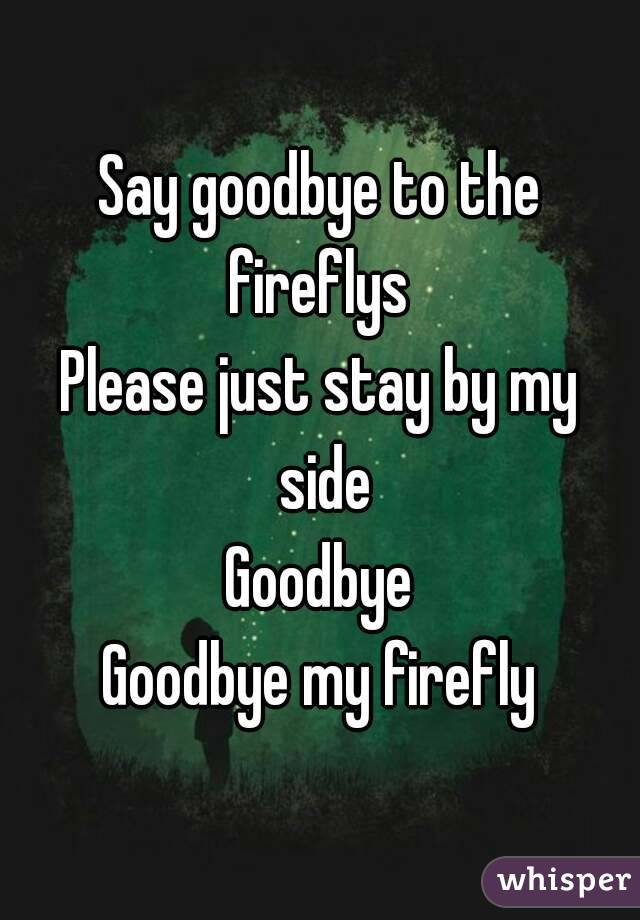 Say goodbye to the fireflys  Please just stay by my side Goodbye Goodbye my firefly