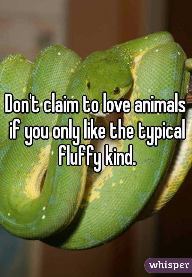 Don't claim to love animals if you only like the typical fluffy kind.
