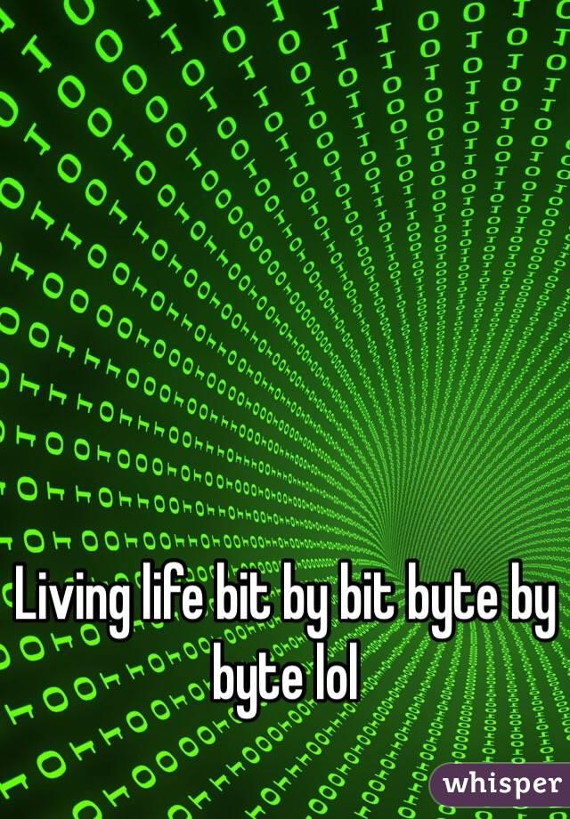 Living life bit by bit byte by byte lol