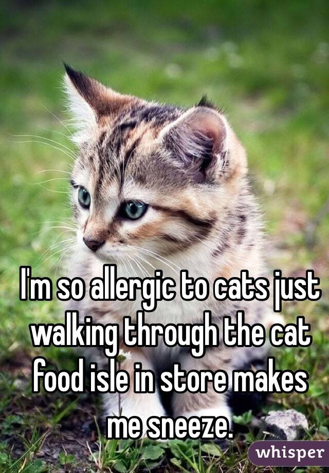 I'm so allergic to cats just walking through the cat food isle in store makes me sneeze.