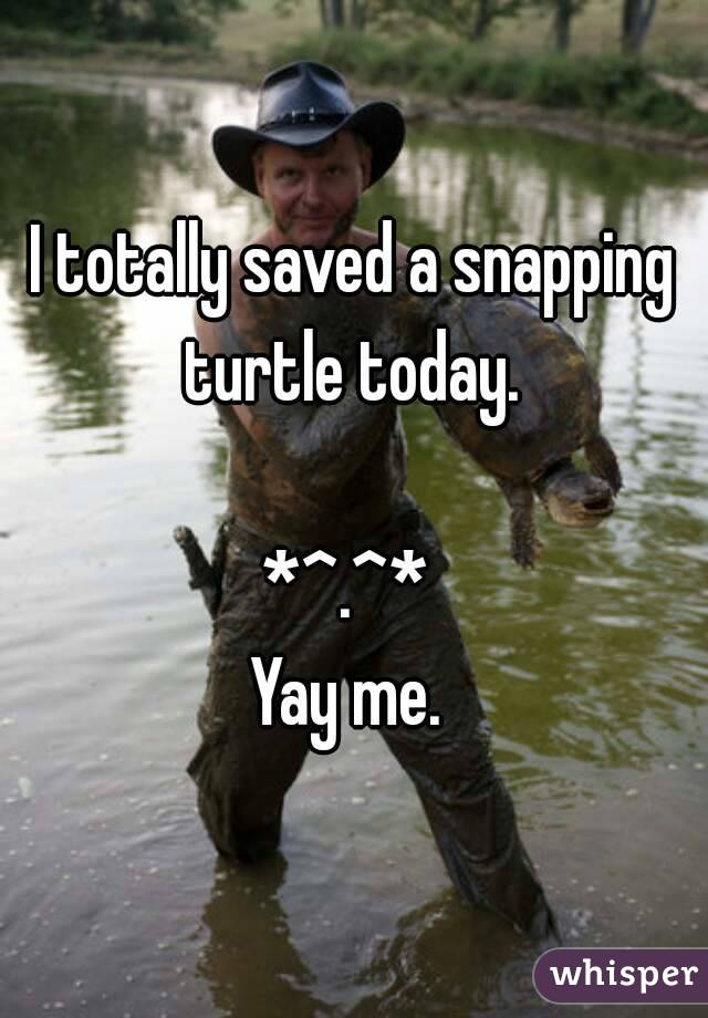 I totally saved a snapping turtle today.   *^.^*  Yay me.