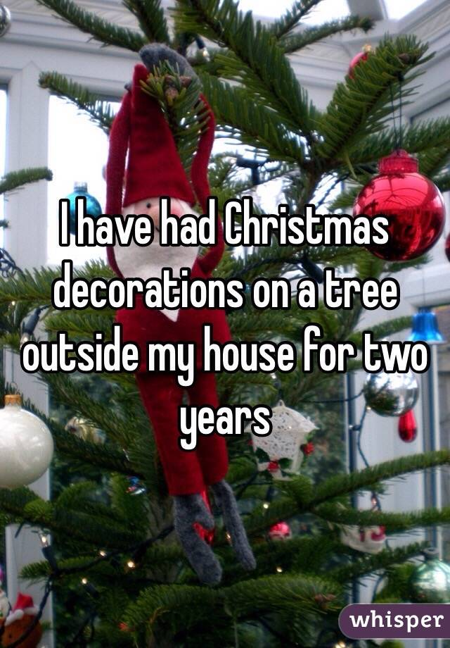 I have had Christmas decorations on a tree outside my house for two years