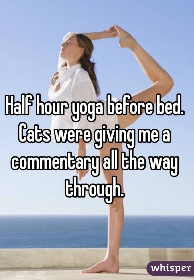 Half hour yoga before bed. Cats were giving me a commentary all the way through.