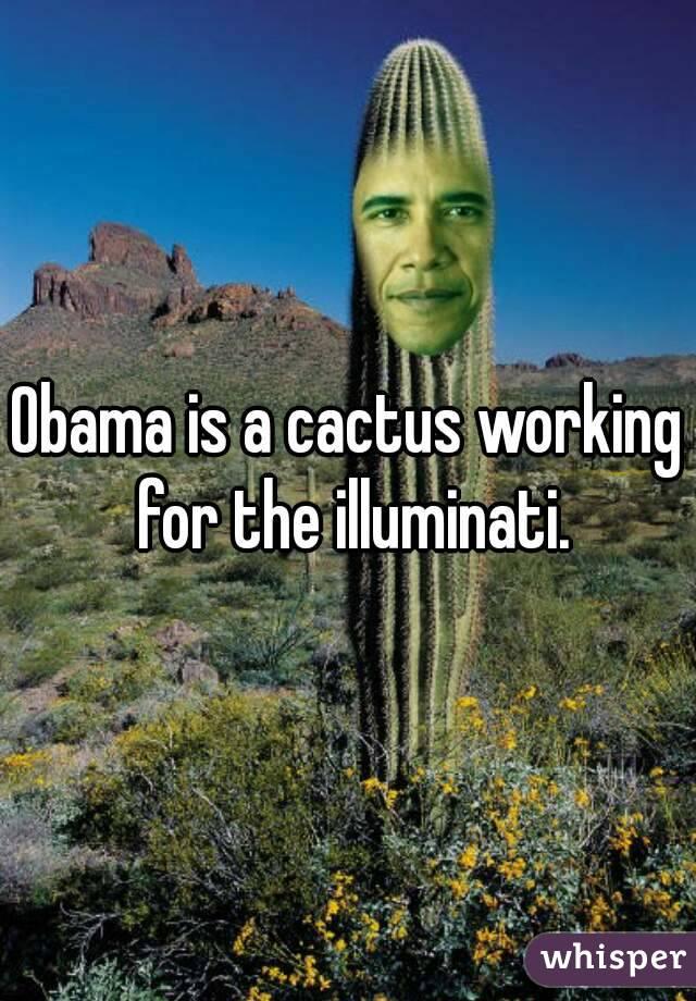 Obama is a cactus working for the illuminati.