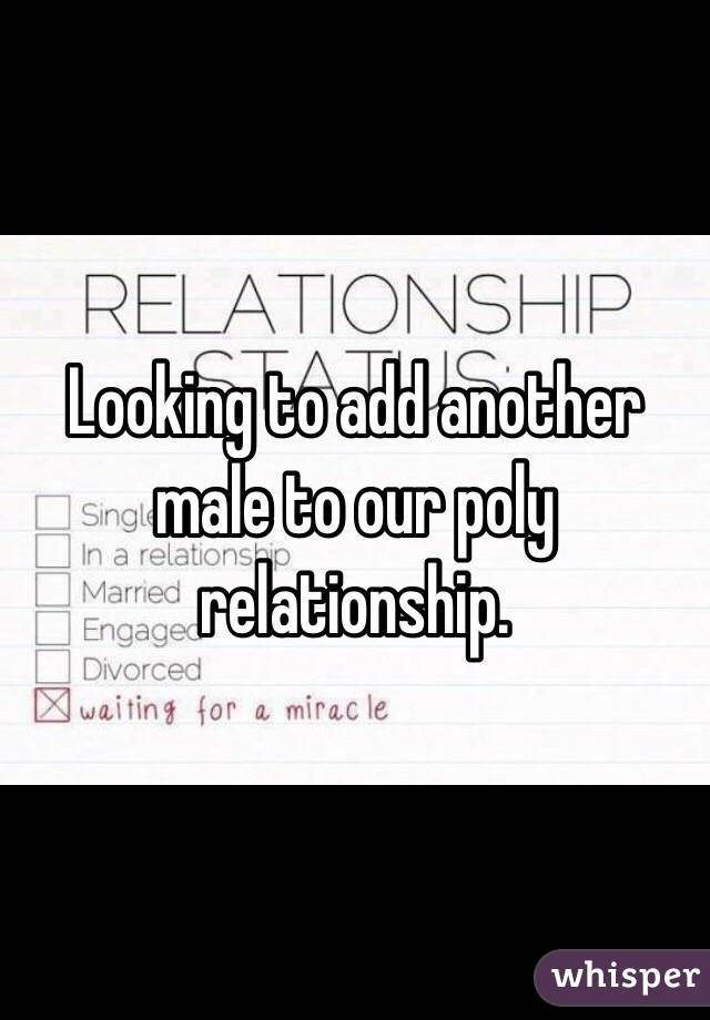 Looking to add another male to our poly relationship.