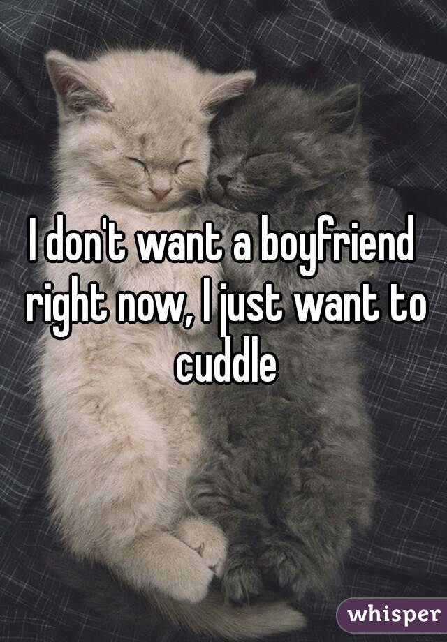 I don't want a boyfriend right now, I just want to cuddle