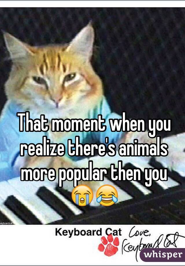 That moment when you realize there's animals more popular then you  😭😂
