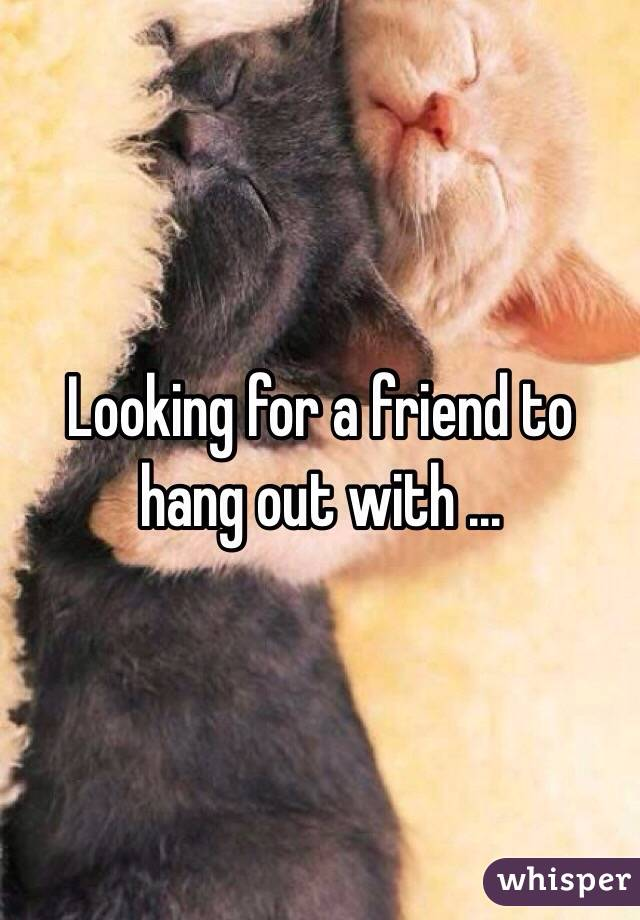 Looking for a friend to hang out with ...