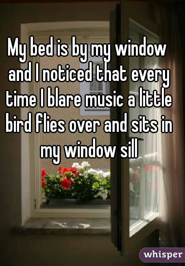 My bed is by my window and I noticed that every time I blare music a little bird flies over and sits in my window sill