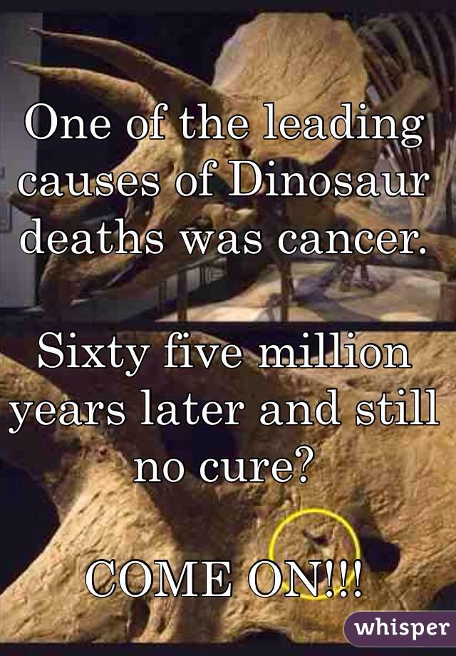 One of the leading causes of Dinosaur deaths was cancer.  Sixty five million years later and still no cure?  COME ON!!!