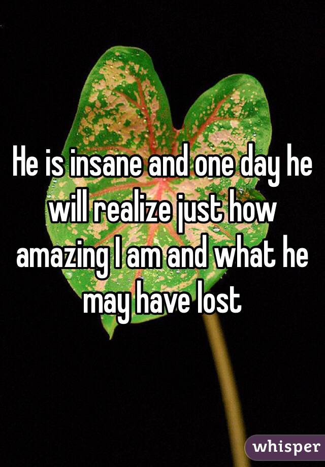 He is insane and one day he will realize just how amazing I am and what he may have lost