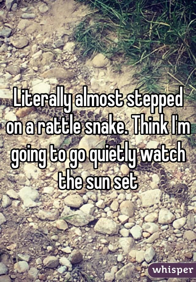 Literally almost stepped on a rattle snake. Think I'm going to go quietly watch the sun set