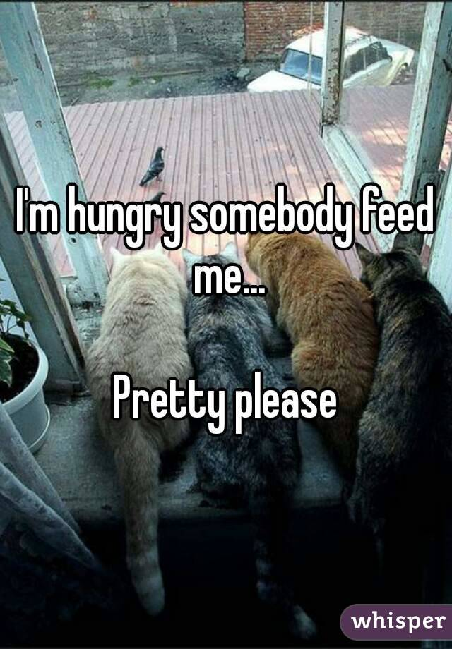 I'm hungry somebody feed me...  Pretty please
