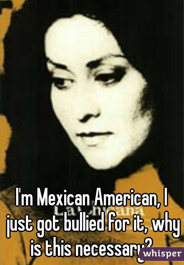 I'm Mexican American, I just got bullied for it, why is this necessary?