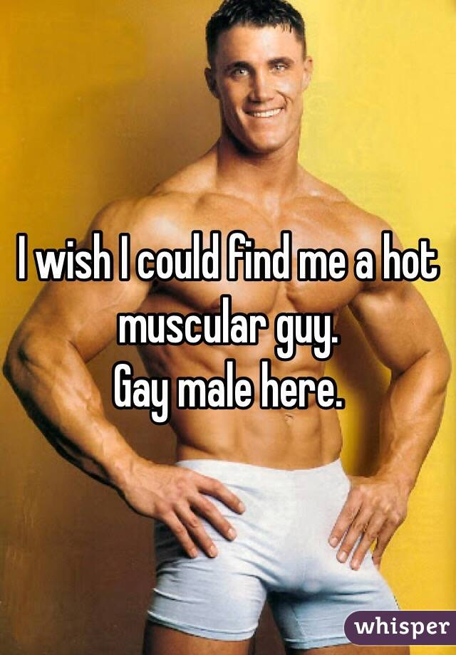 I wish I could find me a hot muscular guy.  Gay male here.
