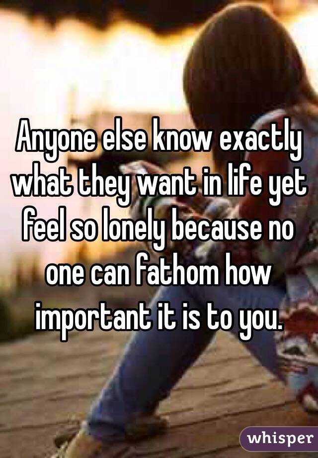 Anyone else know exactly what they want in life yet feel so lonely because no one can fathom how important it is to you.