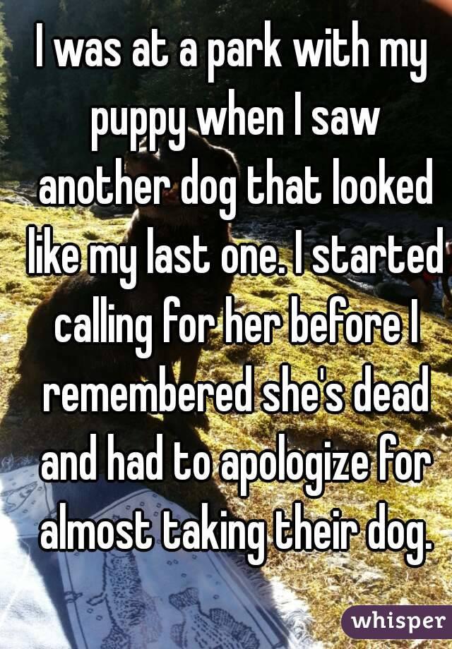 I was at a park with my puppy when I saw another dog that looked like my last one. I started calling for her before I remembered she's dead and had to apologize for almost taking their dog.
