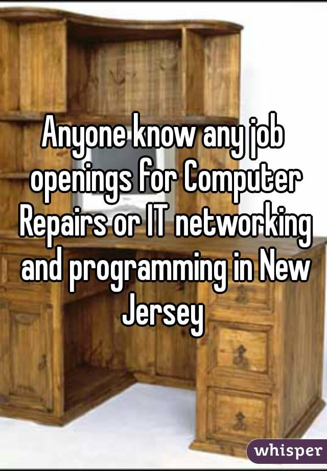Anyone know any job openings for Computer Repairs or IT networking and programming in New Jersey