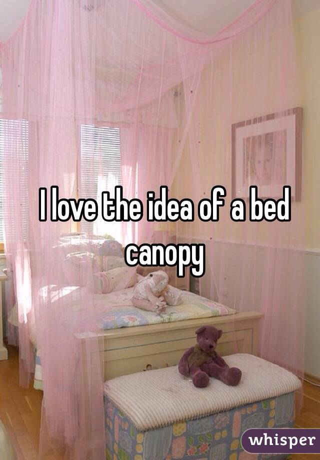 I love the idea of a bed canopy