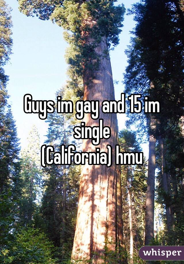 Guys im gay and 15 im single (California) hmu